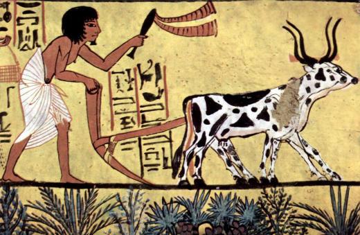 Ancient+Egypt+-+%2528125%2529.jpg